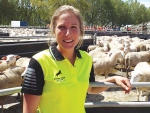 Dairy sheep open day draws huge crowd