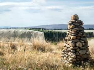 The big dry continued for Central Otago this growing season, with some saying it is the driest period in 39 years.