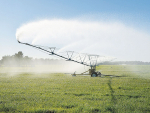 A national water strategy and water storage top the election manifesto of Irrigation NZ.