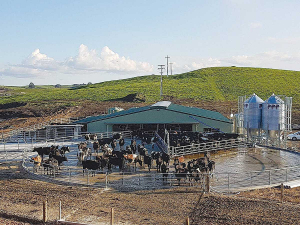 Dairy operators must have records to confirm that milk cooling requirements are being met.