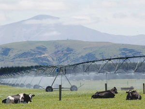 The Government is injecting $10.6 million towards a water storage facility in Raukokore, in the eastern Bay of Plenty.