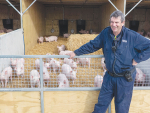 Christchurch Men's Prison farm chief instructor Warren Chilton with fattening pigs on one of the farm's Freedom Farms-certified straw barns. Photo: Rural News Group.