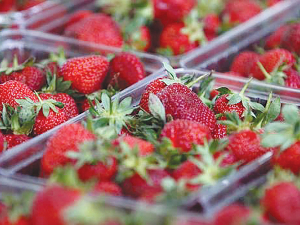 The price of strawberries fell to an average of $3.45/250g in November.