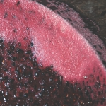 Winemaking practices on colour, phenolics