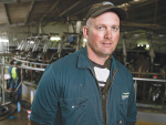 Dairy exports tipped to rise
