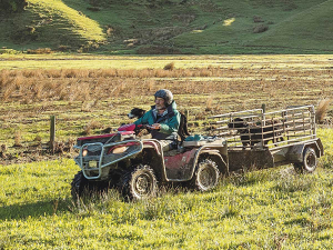 Data shows that quads, along with other farm vehicles, are often stolen when the keys are left in the ignition.