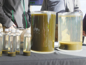 Samples of dairy effluent on show at the launch of the ClearTech system show how suspended solids precipitate out under the influence of a special coagulant.