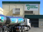 TAF-style plans for Aussie dairy co-op